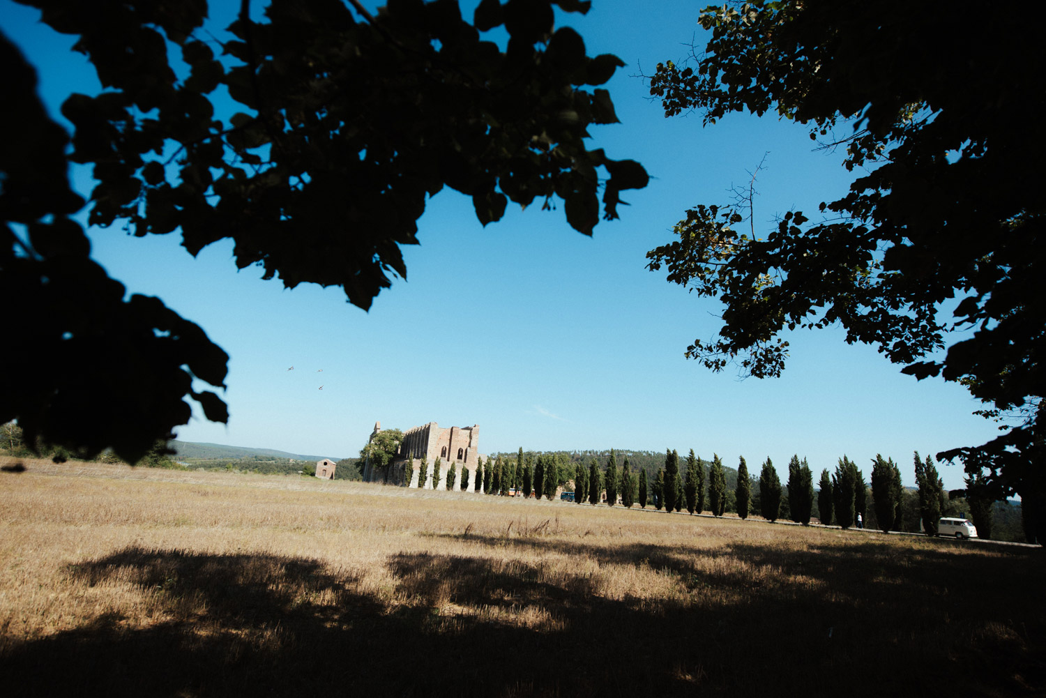 San galgano abbey area